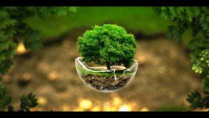 zelene_povrsine.jpg